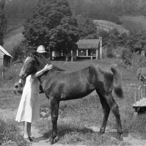 Mrs. E.G. Jarvis and a young colt