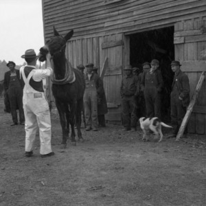 Franklin County Horse and Mule Clinic
