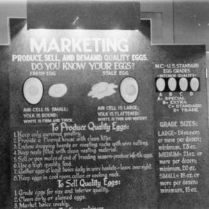 Do you know your eggs?  (Poster)