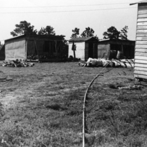 Water lines on top of ground running to a series of turkey brooder houses in background.