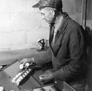 Cartoning Eggs - J. Pickler 1950