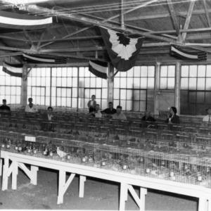 Pigeon Show, N.C. State Fair, 1952
