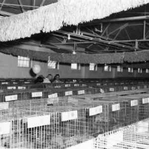 Poultry Show, 1952 N.C. State Fair
