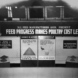 Poultry Exhibit at 1958 N.C. State Fair