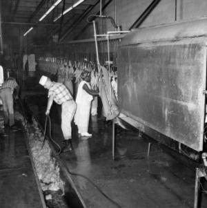 1960, Watson Poultry Co., Rose Hill, N.C.