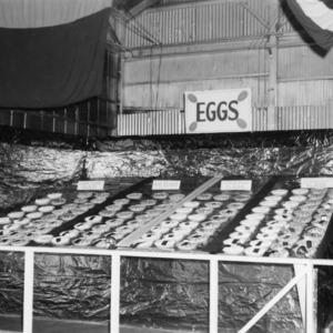 N.C. State Fair Egg Show, 1952