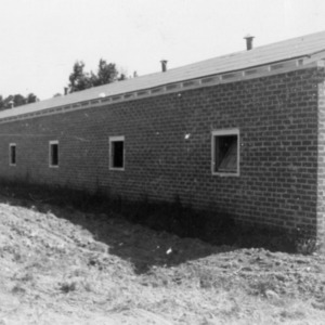 Mrs. Lendon Tice's new brick brooder house