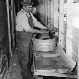 Man washing waterer in poultry house alley