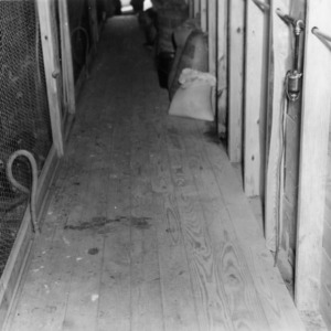 Service alley in brooder house