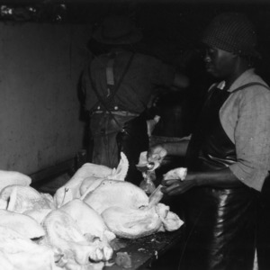 Workers putting neck and giblets into dressed and drawn turkeys