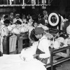 Weighing and wrapping turkeys at Siler City Dressing Plant