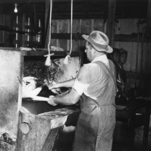 Tom Caudle putting turkey in machine at Peachland Dressing Plant