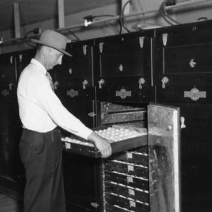 Arthur Wooten inspecting tray of eggs in incubator