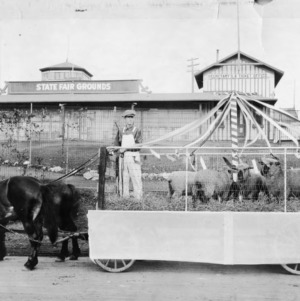 Horse-drawn cart displaying sheep at State Fair