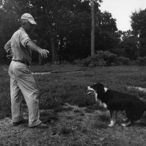 Harold Lamb with border collie