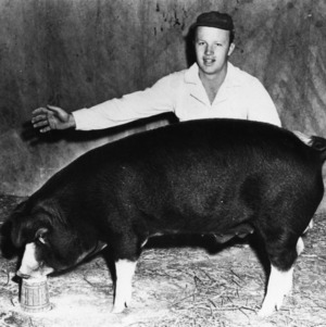 Man with pig