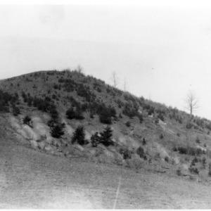 Erosion of Mountain Pasture