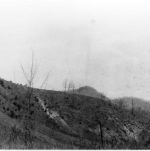 Mountain Pasture Erosion