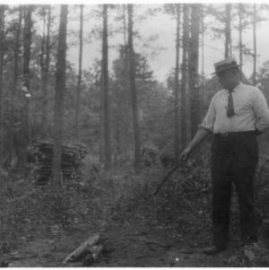 Brush disposal forestry demonstration