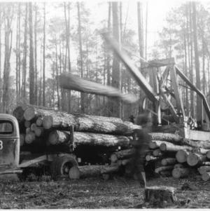 Boom-Loader Loads Logs
