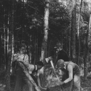 4-H Members working on Forest Thinning Project