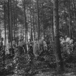 Demonstration meeting in woods of C.G. Hartley, Hudson