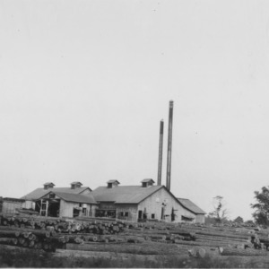 Acres of logs at mill of Carolina Cooperage Company, Windsor, N.C.