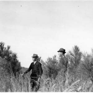 Extension Agents W. J. Barker and A. J. Harrell inspecting loblolly pines