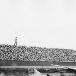 Barge-load of pulpwood