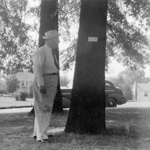 R. W. Graeber inspecting tree name plate
