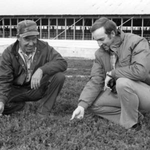 Farmer Hal Trott and Extension Agent Danny Shaw examining legume cover crop on Trott's farm