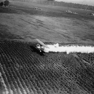 Plane cropping dusting cotton field