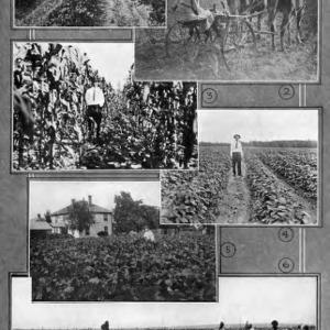 Farm fields (book page)