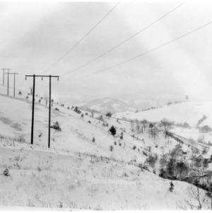 R. N. Barber's snow-covered apple orchard