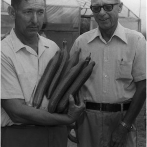 Cucumber farmers Fletcher Wrenn and Herman Williams