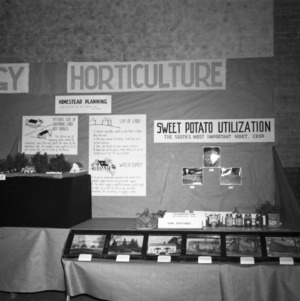Farm and Home Week Horticulture Exhibit