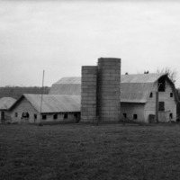 Dairy Barn and Silos