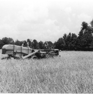 Combining Barley and Crimson Clover