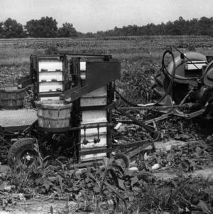Cucumber Harvester