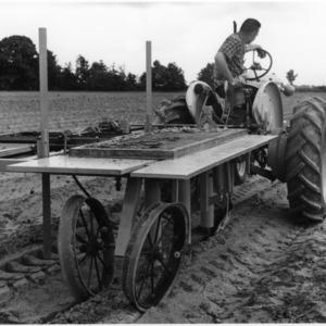 Tractor pulling experimental tobacco transplanter