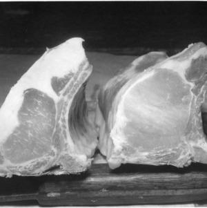 Cuts of meat, ribs