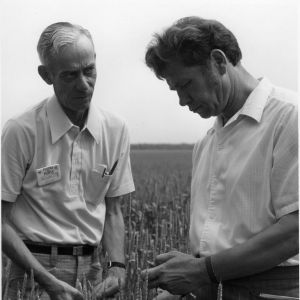 Two unidentified men with crop plants on the Goodwill People to People travel mission to Europe