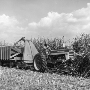 Man Plowing a Field