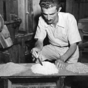 Head of Agronomy Visscher Examing Processed Rice, Peru