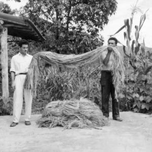 Two Men with Kenaf Fiber, Peru