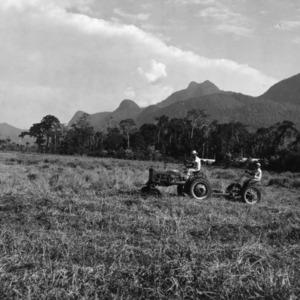 Clipping Pastures, Peru