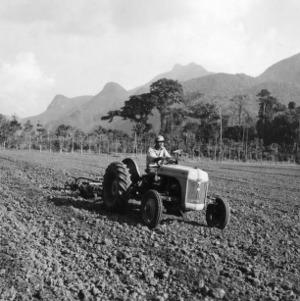 Preparing Seedbed, Peru