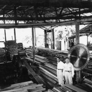 Sawmill, Peru
