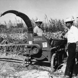 Peruvian Farmers