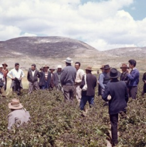 Agricultural Mission to Peru - Meeting in the Field